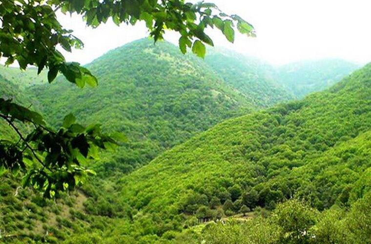 ورود به مناطق حفاظتشده آذربایجانشرقی تا اواخر خرداد ممنوع است