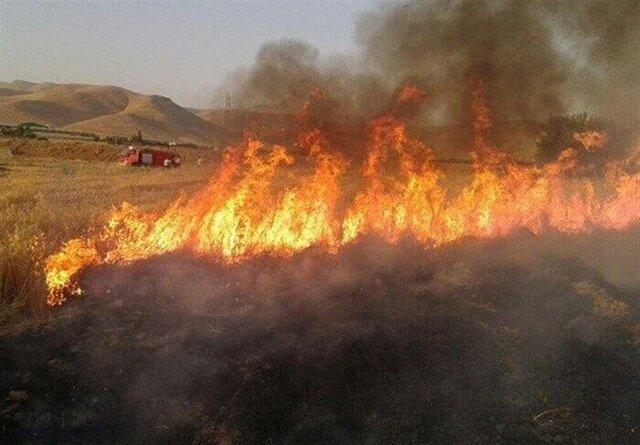 """آتش سوزی در منطقه جنگلی """"پیر داود"""" شهرستان ورزقان"""