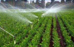۷۸ هزار هکتار از اراضی آذربایجانشرقی به سیستم آبیاری تحت فشار مجهز شد
